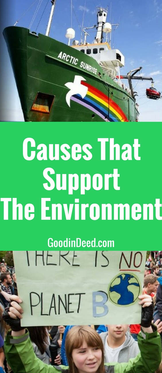 Many causes support the environment, but many of them can't operate without the assistance of the people around the world.
