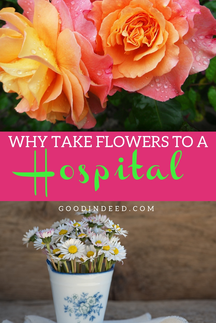 When you take flowers to a hospital, you bring scents, comfort, and a little taste of home and beauty to a dull and painful healing process.